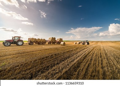 Agriculture straw wagon in farm field