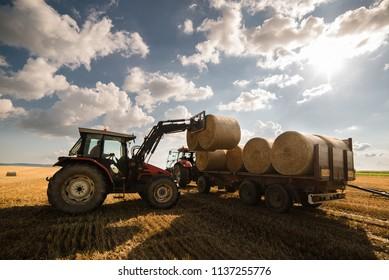 Agriculture straw wagon in farm field