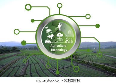 Agriculture Technology Agritech system on green icon on background Vegetable garden on Way to go angkhangstation