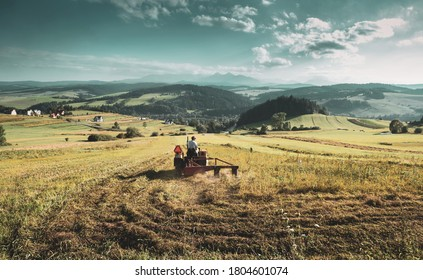 Agriculture - tractor mowing hay on the field - haymaking. Hills landscape as background.
