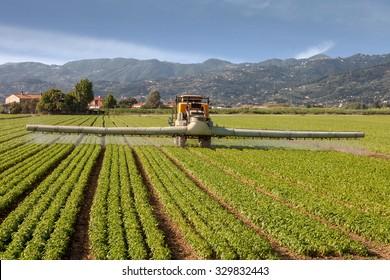 Pesticide Spraying Images, Stock Photos & Vectors | Shutterstock