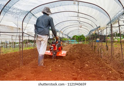 agriculturist farmers are doing Planting with soil preparation to grow crops.