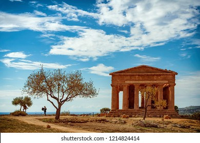 Agrigento - Temples valleyA greek temple in Sicily with an isolated almond tree in the foreground