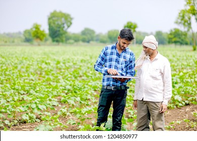 agronomist with farmer at cotton field