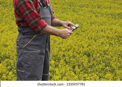 Agronomist or farmer examine blossoming canola field, using tablet
