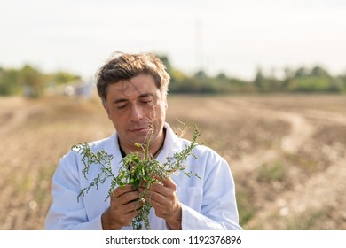 Agronomist holding a small plant seedling with roots