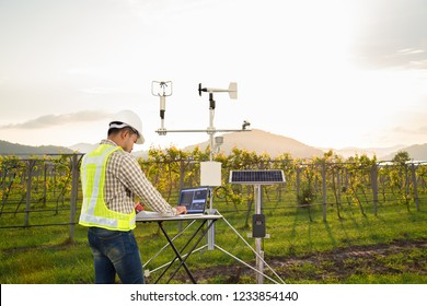 Agronomist using tablet computer collect data with meteorological instrument to measure the wind speed, temperature and humidity and solar cell system in grape agricultural field, Smart farm concept - Shutterstock ID 1233854140
