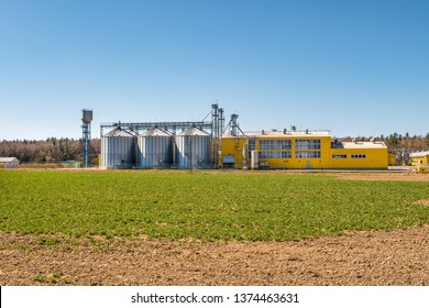 agro-processing plant for processing and silos for drying cleaning and storage of agricultural products, flour, cereals and grain. poultry farm