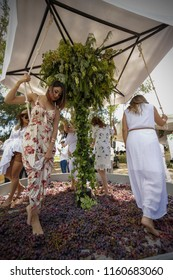 Aguascalientes, Mexico. August 18/2018. Tradition winery, People treading grapes to make wine in a traditional way