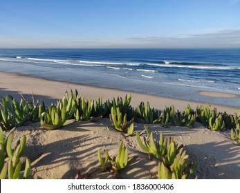 Agucadoura beach at early morning.