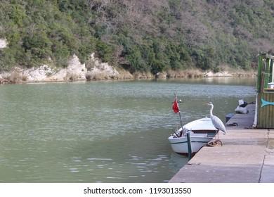 Agva istanbul lake
