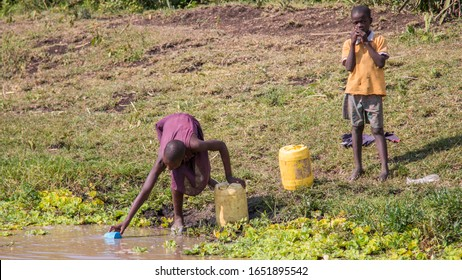Ahero, Kenya - 24 June 2017: A young girl scoops water from a dirty pond to carry back home for drinking, cooking and bathing
