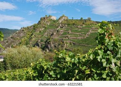 Ahrtal (Ahr Valley) vineyards on rocky slopes