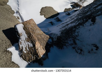 Ah-Shi-Sle-Pah Wilderness Study Area in winter with petrified wood ,New Mexico,USA