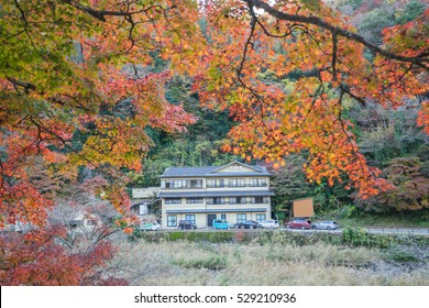 AICHI, - NOV 23: Beautiful landscape in autumn at Korankei, on Nov 23, 2016 in Aichi, Japan