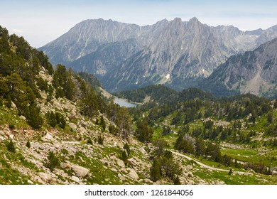 Aigues tortes national park. Forest and peaks landscape. Spain