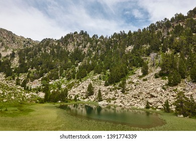 Aigues tortes national park forest landscape. Estany de Ratera. Spain