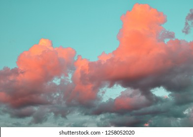 Air clouds of coral live color on the blue sky at sunset. background trends 2019