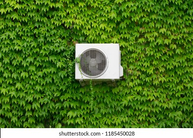 Air conditioning on a wall overgrown with green leaves