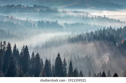 Die Luft. Licht und Schatten im Nebel. Erste Sonnenstrahlen durch Nebel und Bäume auf den Hängen. Morgens Herbstgebirgslandschaft Karpaten (Oblast Ivano-Frankivsk, Ukraine).