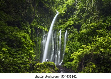 Air Terjun Tiu Kelep waterfall near Rinjani, Senaru, Lombok, Indonesia, Southeast Asia