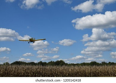 Aircraft flies close to corn field to spray pesticide and insecticide in a Midwest farm field in the United States of America