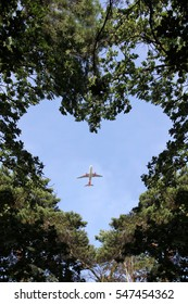 An airplane flies over a forest. The trees create the shape of an heart in the sky.