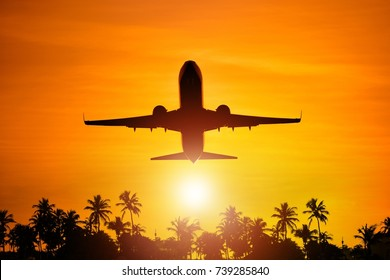 Airplane Flight To Paradise Concept Image with Airliner and Palm Trees Silhouette. Travel Theme.