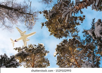 Airplane flying above winter forest. White passenger plane flies from cold areas to the warm sea. Travel concept. Snow covered beautiful trees in northern country. Bottom view. Christmas holiday tour