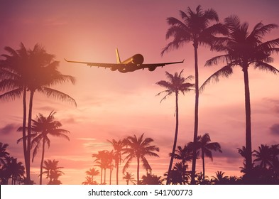 Airplane flying over tropical palm tree and sunset sky abstract background. Copy space of business summer vacation and travel adventure concept. Vintage tone filter effect color.