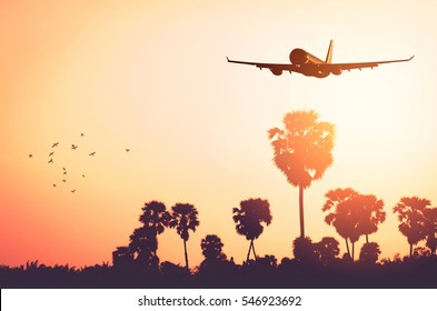 Airplane flying over tropical palm tree and sunset sky abstract background. Copy space of business summer vacation and travel adventure concept. Vintage tone filter effect color style.