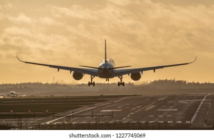 Airplane landing to airport runway at sunset