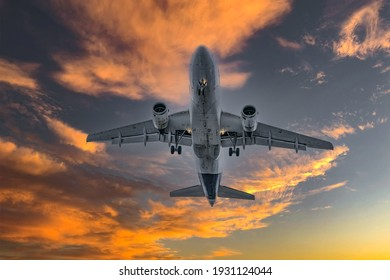 Airplane in the sky at sunrise or sunset. flight travel transport airline background concept.