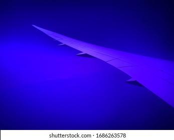 An airplane wing at blue dawn