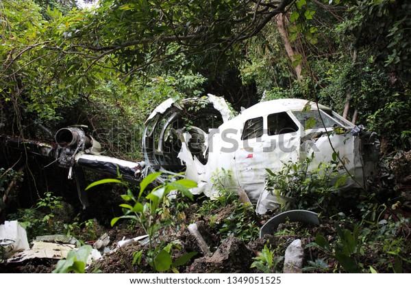 Airplane Wreck in Jungle