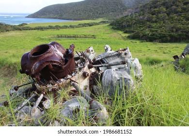 Airplane wreckage, Lord Howe Island, Australia.