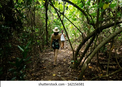 AITUTAKI - SEP17:Tourists explore the jungle of a tropical Island in Aitutaki lagoon on Sep 17 2013.Cook Islands are comprised of 15 islands spread over 850,000 sq mi (2.2 km2) of the Pacific ocean.