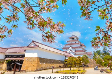 Aizuwakamatsu Castle and fallen cherry blossom petals in Fukushima, Japan