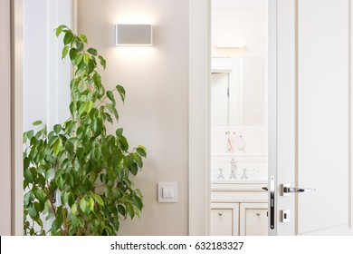 Ajar white door in the bright bathroom. Series switch and modern wall lamp on light gray wall. Chrome door handle and lock. Green houseplant