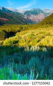 Ajax peak is sen in the background of the valley floor in the summertime in Telluride Colorado