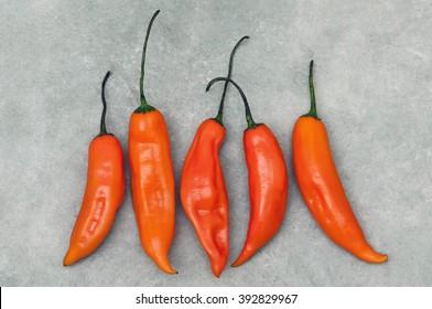 Aji Amarillo hot pepper on stone background