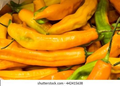 Aji amarillo, yellow chili pepper from South America, Arequipa, Peru.  Natural market look.