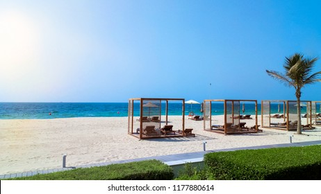 Ajman. Summer of 2016. The green oasis of the hotel The Oberoi Beach Resort, Al Zorah . Welcome to paradise.
