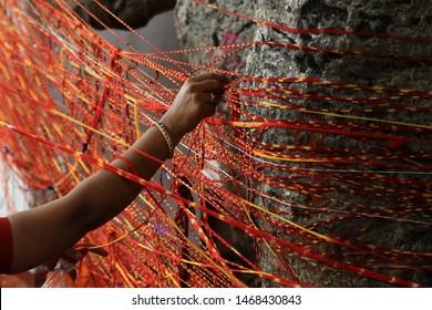 "AJMER, INDIA - 1 AUGUST 2019 - A Hindu woman offers prayers as she ties a sacred thread to a ""Kalpavriksha"" a divine wishing tree on the occasion of Hariyali Amavasya at an Hindu temple."
