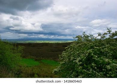 Aka Speckled Mountain,Carrowkeel, Co. Sligo, Ireland