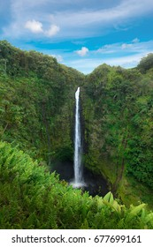 Akaka Falls State Park in sunny day,  Big Island Hawaii