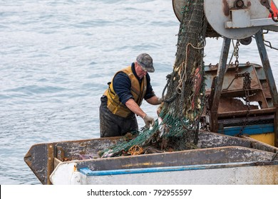Akaroa, New Zealand - November 20 2017. A professional fisherman sorts through a net full of a variety of fish species in his small trawler boat