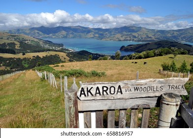 Akaroa walking track