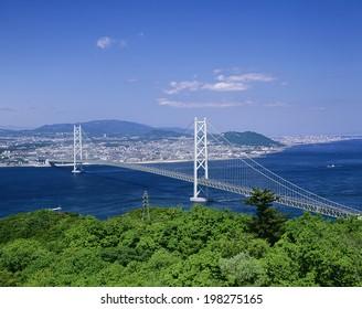 Akashi Kaikyo Bridge Of Fresh Green