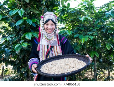 Akha using a winnowing basket separating arabica coffee from shell, Akha in the north of Thailand enjoying with job, Akha was separating coffee from shell by bamboo basket with traditional cloth.